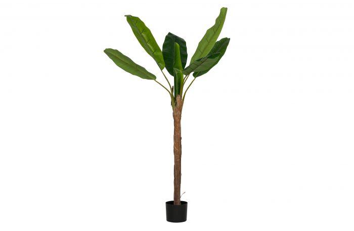 Woood-Kunstpflanze-Bananenpflanze-grün-180-cm