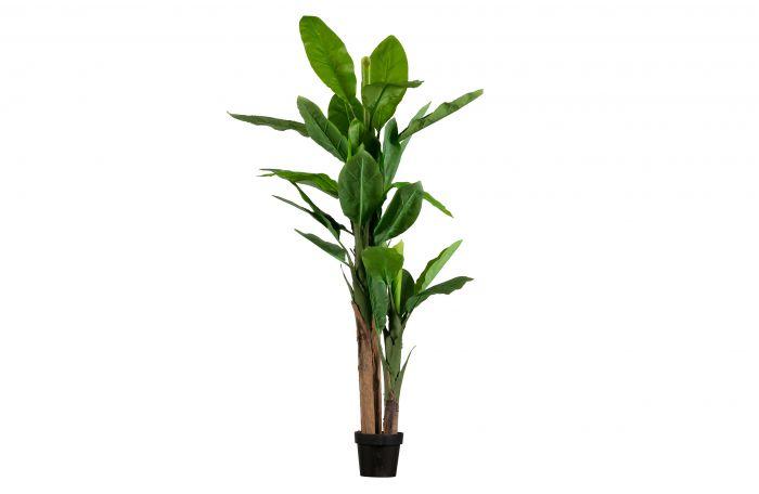 Woood-Bananenpflanze-Kunstpflanze-grün-195-cm